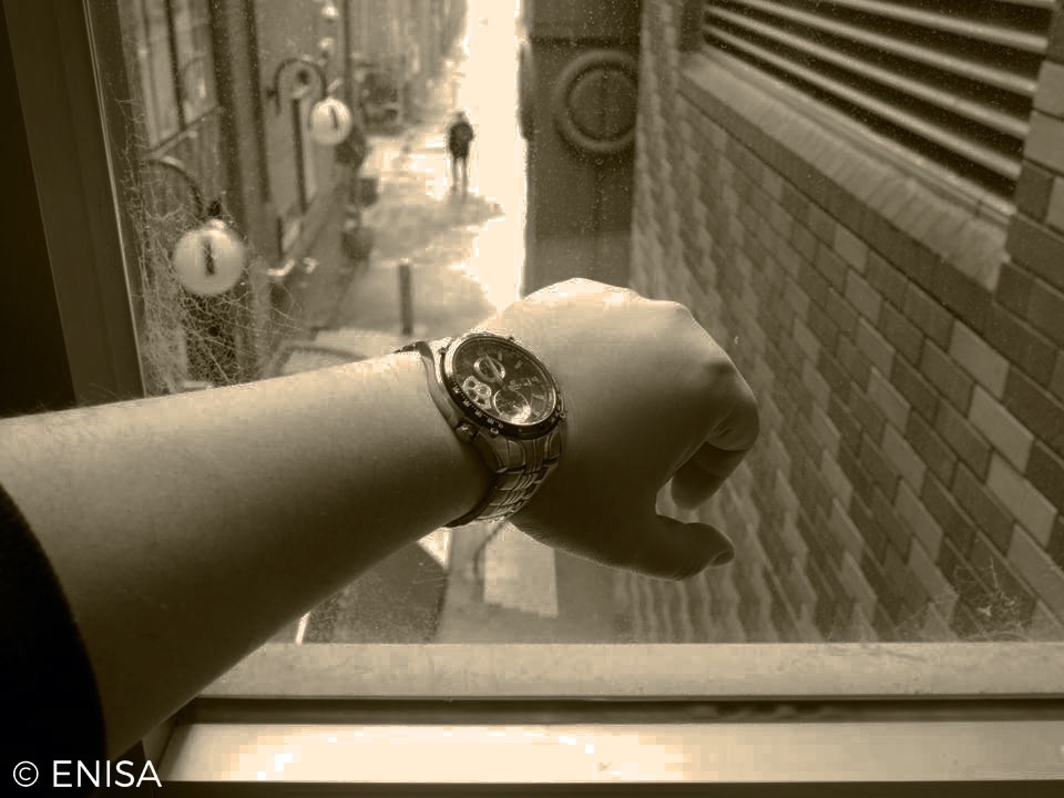 A hand in front of a window, wearing a watch